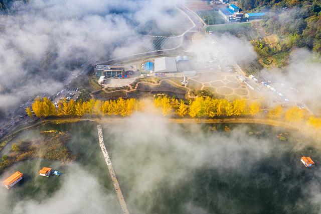 박준덕 충북의아름다운길.jpg