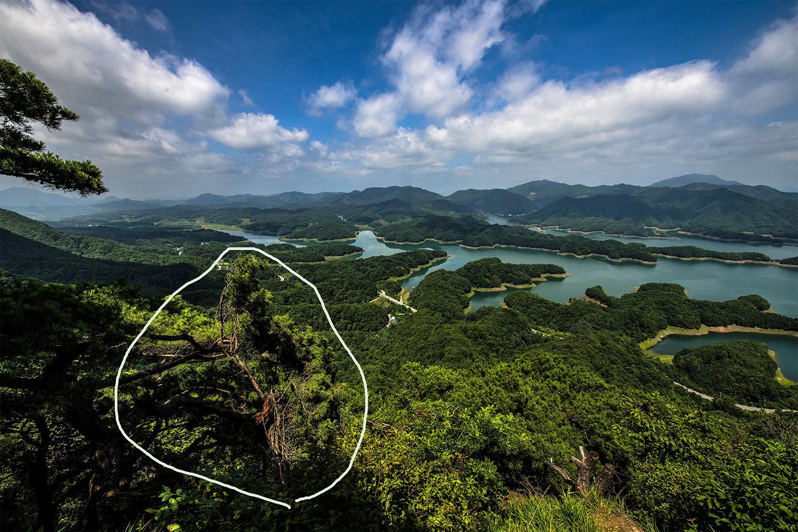 악어섬 1122-5.jpg